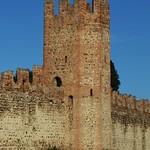Tour de défense, emparts sud de Montagnana, province de Padoue, Vénétie, Italie. thumbnail
