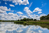 Sailing across a blue mirror (The Frustrated Photog (Anthony) ADPphotography) Tags: buckinghamshire category england landscape marsworthreservoir places travel english greatbritain uk unitedkingdom water ripples reflections trees grass reeds canon1585mm canon70d canon rural countryside nature natural bluesky clouds whiteclouds lake sky tree