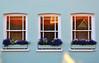 Sash Windows (RapidSpin) Tags: windows architecture sash glazing plants boxes frame glass reflection blinds