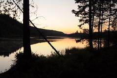 150820 - Der Rottnan am Abend, Värmland (klaas.sperling) Tags: schweden värmland rottnan abendhimmel flus bäume