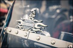 Harley Davidson screen (G. Postlethwaite esq.) Tags: dof derbyshire hardlydangerous harleydavidson heage sonya7mkii badge beyondbokeh bokeh classicbikes depthoffield fullframe mirrorless motorbikes photoborder selectivefocus windmill windscreen