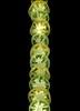 58910.01 Solanum lycopersicum 'Lemon Boy' (horticultural art) Tags: horticulturalart solanumlycopersicumlemonboy solanumlycopersicum solanum tomato tomatoes slices line fruit food sliced