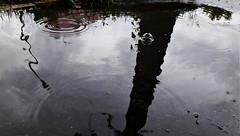 Pocsolya-absztrakt (Szombathely) (milankalman) Tags: abstract rain puddle greyscale street art