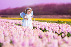 Beautiful toddler girl in fairy costume in a flower meadow (colourfulcreation05) Tags: adorable angel baby background beautiful beauty butterfly charm child childhood costume crown curly cute daffodil dress dutch easter fairy fashion field flowers garden girl hair happy holland hyacinth keukenhof kids little magic magical nature netherlands pink portrait pretty princess small spring summer sweet tale toddler wand white wind wings young harm russianfederation