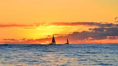 Waikiki Sunset Sailing (Edmund Garman) Tags: waikiki view sun surf sail boat down sailing honolulu hawaii oahu hi sea colorful water ocean warm winter outdoor orange clouds bay sunset air beach light cloud sky waves blue yellow
