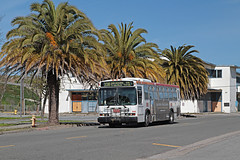 MUNI Nr. 8129 Treasure Island (Bus und Bahn by SF) Tags: neoplan an440 sanfrancisco muni autobus dieselbus treasureisland