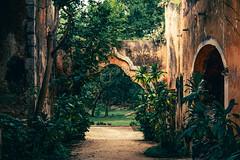 Clair-obscur (julien.ginefri) Tags: mexico méxico america latinamerica yucatán yucatan hacienda sanpedroochil