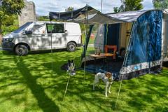 138/365 - Animal, Vegetable & Mineral (Pimm's O'Clock)! (Nikki M-F) Tags: campsite caravan van awning dogs harris jazz spring church sunlight shade