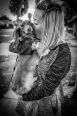 Benji <3 (jizzy32) Tags: canon eos eosm6 m6 eosm5 m5 street photography dog puppy weinerdog animal animals fluffy cute