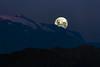 Blue Hour Moon (Jimquintaola) Tags: jaimesanmartinphotography landscapephotography lightroom landscape moon supermoon bluehour bluesky southamerica chile jimquintaola bigwavejim mountains cerroelplomo photography photopills dusk atardecer moonrise nature astrophotography