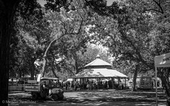 Scenes from 2018 Fort Worth Mayfest 2 (photo.po) Tags: canonphotography canonrebelt6 canon monochrome blackandwhitephotography gazebo shadows shade trees dfw tx fortworth