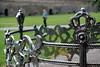 Majestic fencing (Ineke Klaassen) Tags: majestic koninklijk majestueus maastricht zuidlimburg park hek hekwerk sony sonyimages sonya6000 sonyalpha sonyalpha6000 sonyilce6000 ilce inthepark fencing outdoor buiten nederland netherlands thenetherlands dutch royal