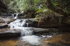 Terrace Falls || HAZELBROOK || BLUE MTNS (rhyspope) Tags: australia aussie nsw new south wales canon 5d mkii terrace falls water waterfall creek stream river rainforest forest woods nature green tree fern pool pond rhys pope rhyspope blue mountains bluemountains hike walk bush bushwalk explore adventure travel tourist amazing wow