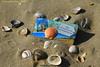 Erinnerungen - memories (Noodles Photo) Tags: noordwijkaanzee strand muscheln shells beach erinnerungen herinnering memories noordwijk provinzsüdholland niederlande netherlands paysbas nederland küchenmagnet kühlschrankmagnet sand canoneos7d ef24105mmf4lisusm