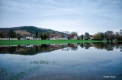 Crue de l'Epte au lever du jour (1) (didier95) Tags: inondation crue cruedelepte giverny eure epte paysage normandie reflet ciel