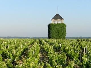 Tour du château Coufran