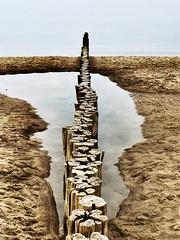 Path (HeikeFranke) Tags: water holz sand wasser strand beach ostsee balticsea sea