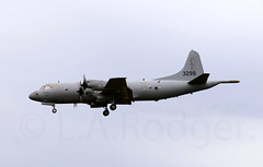 P3 3299 (TF102A) Tags: aviation aircraft airplane p3 orion raflossiemouth jointwarrior norwegianairforce 3299