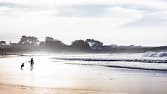 6668h One Girl & Her Dog (foxxyg2) Tags: beach sea ocean pacific asilomar asilomarbeach vgirl dog hk highkey