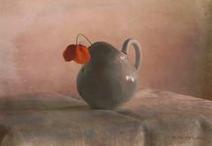 Still Life ... (MargoLuc) Tags: poppy red wildflower table jug pottery soft light window spring picturesque flower shadows stilllife texture skeletalmess