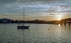 Morning Over Bridge  (Nikon S2) (PositiveAboutNegatives) Tags: nikon rangefinder s2 vintagecamera nikons2 50mm nikkor film analog agfa vista200 fuji coolscan lakewith florida morning sunrise daybreak firstlight