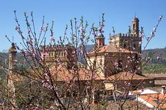 DSC02676 (imanh) Tags: uitzicht klooster imanh iman heijboer guadalupe monastry view bloesem blossum monasterium