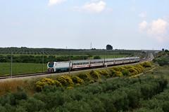 E402 141 IC 710 (luciano.deruvo) Tags: ic e402b e402141 intercity carrozzeicsun trenitalia fs fiori campagna trenopasseggeri locomotiva railroad train