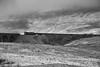 66070 Ribblehead R00213 D210bob   DSC_0553 (D210bob) Tags: 66070 ribblehead r00213 d210bob dsc0553 freighttrain nikond610 nikon blackwhitephotography blackwhite monochrome monochromephotography railwayphotographs railwayphotography railwayphotos railwaysnaps settlecarlislerailway ews