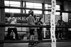 3561 - Training (Diego Rosato) Tags: training allenamento boxelatina boxe boxing pugilato palaboxe little boxer piccolo pugile ring fuji x30 rawtherapee bianconero blackwhite
