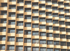 197/365 : Apartments (KitaDependence) Tags: apartments yellow windows architecture building nikon nikod610 d610 365 365project project 50mm street streetphotography