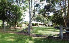 1026 Tyringham Road, Dorrigo NSW