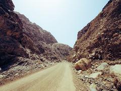 Offroad Explorer (1) (oppisan) Tags: panasonic panasoniclumix panasonicg85 g80g80micro four thirdsmirrorlessuaesharjahmiddle east arabia arab emirates desert photooftheday justshoot