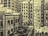 City View NYC (PAJ880) Tags: windows office buildings lower manhattan nyc new york financial district bw mono