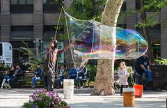 USA - New York - Bubble Maker (Philippe Larosa) Tags: new york city nyc ny building square flatiron bubble maker children madison park