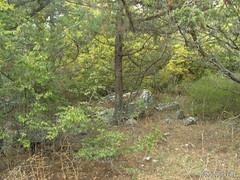 Крим, Таврські могильники на горі Кішка InterNetri Ukraine 2009 134