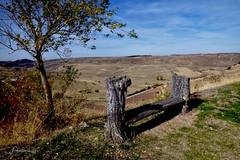 The bench (Anavicor) Tags: medinaceli soria castillayleón paisaje nikon d5300 anavicor anavillar villarana