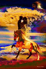 Mates (monicaledan) Tags: couple colors horses love mates partners romance