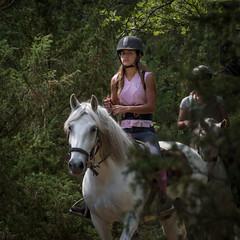 Jeune cavalière dans les bois (pascal548) Tags: animal cheval sport