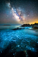 Bioluminescence (BenjaminMWilliamson) Tags: amazing beach beautiful bioluminescence coast georgetown haunting image incredible landscape me maine newengland nightsky photography prints reidstatepark rocky scenery scenic stars usa