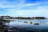1 Quiberon (faneitzke) Tags: portfolio frança france francia europe europa canon canont5 canont5eos1200d bretanha bretagne quiberon autumn automne outono november novembro novembre mar sea mer blue bleu azul sky