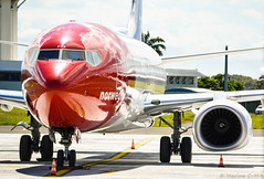 At rest 😴 ☀️ 🌴 (Maxime C-M ✈) Tags: airplane reflection travel sky aviation clouds beautiful exotic martinique caribbean island passion norway grass colors antilles red closeup