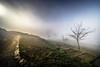 Pico Sacro (Feans) Tags: sony a7r a7rii ii voigtlander 12 iii pico sacro boqueixon galiza galicia sunrise mencer neboa fog mist