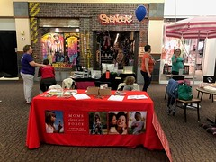MT Moms booth at the Bozeman Baby Expo