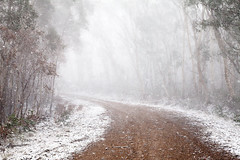 Inside The Snow Globe || CENTRAL TABLELANDS || NSW (rhyspope) Tags: australia aussiensw new south wales canon 5d mkii central tablelands blue mountains oberon jenolan rhys pope rhyspope weather winter ice snow white road street avenue cold
