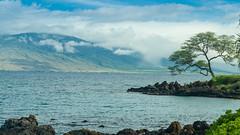 Wailea beach path in the morning (remonstrate) Tags: kihei hawaii unitedstates us