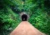 Tunnel (Garganta da Viração) (Werner Wanderley) Tags: tunnel ferroviario railway tunel paraiba bananeiras forest