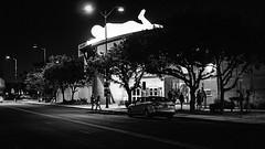 mesa 01564 (m.r. nelson) Tags: mesa arizona america southwest usa mrnelson marknelson markinaz blackwhite bw monochrome blackandwhite streetphotography urban downtownmesa newtopographic urbanlandscape artphotography
