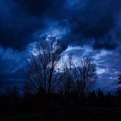 Midnight Clouds (Nicholas Erwin) Tags: clouds midnight bluehour trees highiso nature silhouette moody cloudy blue stormy storm weather naturephotography waterbury vermont vt unitedstatesofamerica usa spring contrast dark fujifilmxt2 fujixt2 xf1855mmf284rlmois xf1855 fujifilm fujifilm1855 squareformat square squarecrop fav10