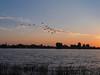 Птицы над рекой в утренний рассвет. (ANATOLY LIPATOV) Tags: дельта астраханская река сарбай утро рассвет птицы небо пейзаж восход вода большой могой природа nature delta astrakhan river sarbay morning dawn birds sky landscape sunrise water bigmogoy