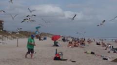 P3290895 (photos-by-sherm) Tags: carolina beach nc north atlantic ocean boardwalk sand walkers sunbathers spring